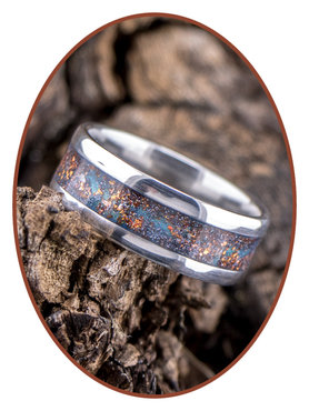 JB Memorials Edelstalen Dames / Heren As Ring 'Sparkling Universe' - CRA002